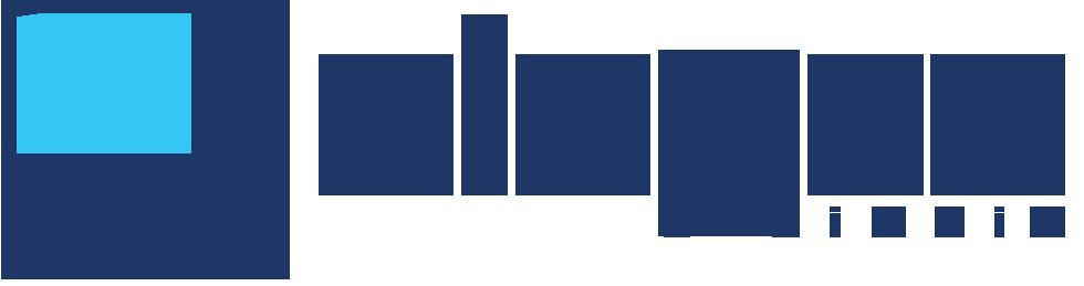 Logo Dincer Lojistik